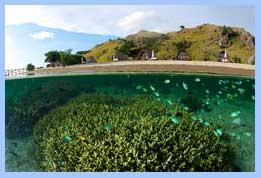 sebayur_besar_island_indonesia